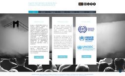 Ingrid Hernandez - Consultora Internacional Servicios de consultoría a gobiernos internacional...