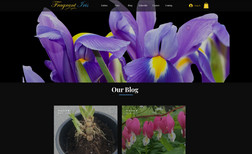 fragrantirisnew Fragrant Iris is a unique website for a unique pro...