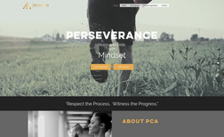 Perseverance Coaching Academy Online Coaching Company wanted a brand new website...
