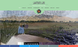 Lavender Lori She is the pioneer for growing a couple types of l...