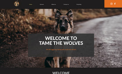 Tame The Wolves Tame The Wolves is private dog training company ba...