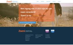Zseni Corporate website