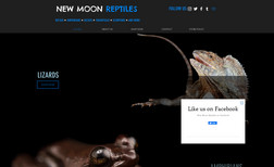New Moon Reptiles New Moon Reptiles is Miami, FL based Reptiles onli...