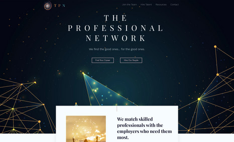 TPN The Professional Network is a recruiting agency wi...