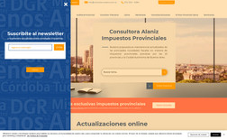 Consutora Alaniz Rediseño completo del sitio. Reestructuración del ...