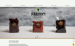 Karyon Herllas Χρόνια εμπειρία και συνεχής βελτίωση της τεχνολογί...