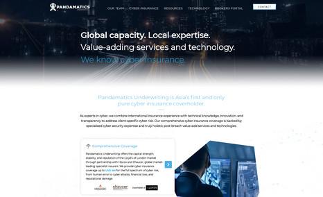 Pandamatics Cyber Security Firm Website