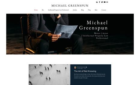 Michael Greenspun