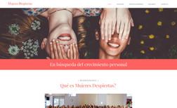 website-25