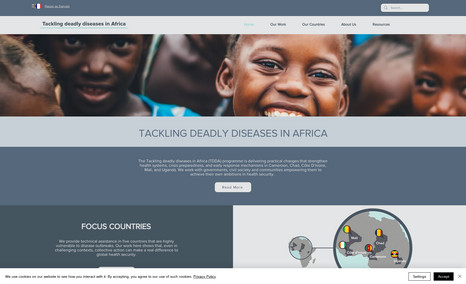 Tackling Deadly Diseases in Africa This was a project for UK Aid and DAI Health to co...
