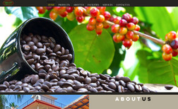 amruthacoffee