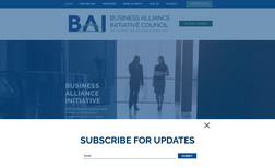 BAI Council Professional site