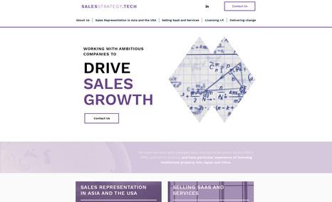 SALESSTRATEGY.TECH Online Business Portfolio | Mobile version | Origi...