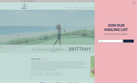 Brittany Golf WIX website for Brittany Golf in Babylon, New York...