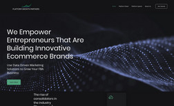Platform Growth Partners Platform Growth Partners is a combination of entre...
