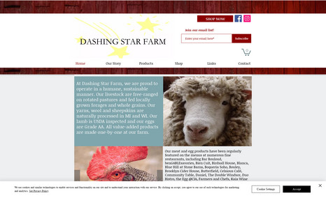 Dashing Star Farm Upstate New York organic farm, free-range sheep an...