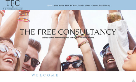 The Free Consultancy A high end website made with editor X for the free...