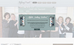 stylingpoint1 This is a website we created for a boutique salon ...
