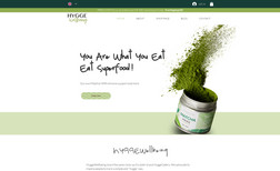 Health eShop Redesigned a lifestyle/nutrition eCommerce site fo...