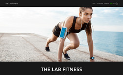 The Lab Fitness An exercise domain built for the purchase of worko...